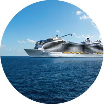 Royal Caribbean, Schiff