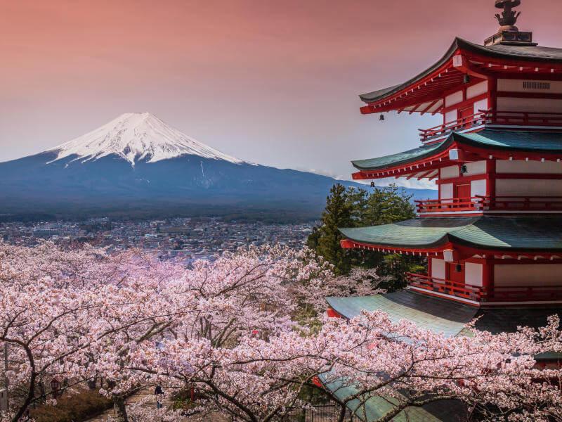15 Tage Japan & Südkorea